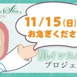 【最大69%OFF!!11/15(日)終了!お早めに♪】セリシャススキン(パスワード保護)